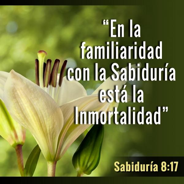 Dios es eterno e inmortal. Inmortal es aquel que recibe la inmortalidad de Dios.